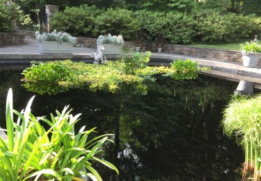 Another view of the reflecting pool.